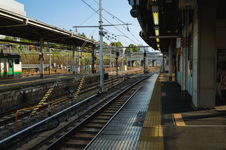 20170423_Tokyo_Ibaraki_Hitachi Seaside Park_29.jpg