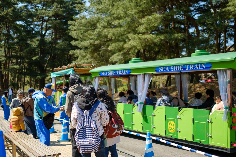 20170423_Tokyo_Ibaraki_Hitachi Seaside Park_47.jpg