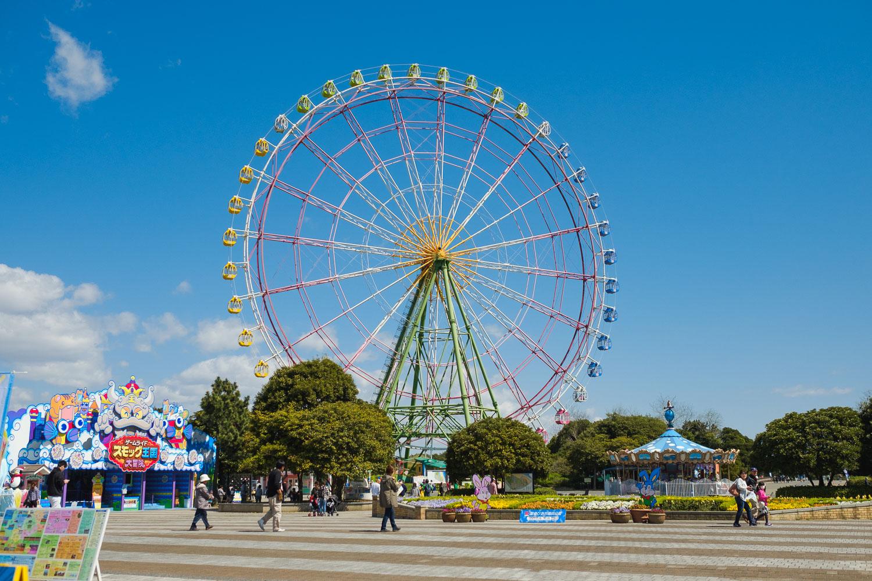 20170423_Tokyo_Ibaraki_Hitachi Seaside Park_53.jpg