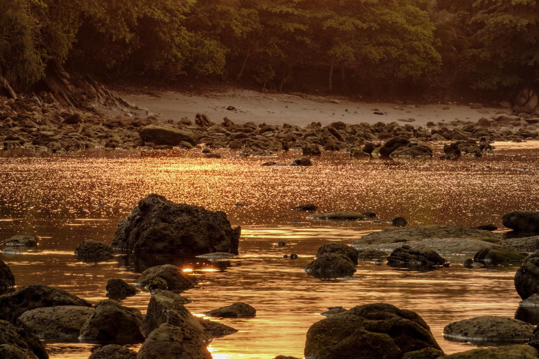 Foto saat golden hour sore hari  Fujifilm X-T2   XF 55-200