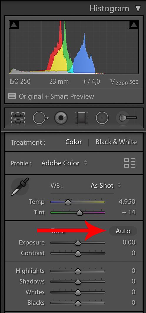 Tekan tombol Auto untuk mengaktifkan setting tone otomatis.
