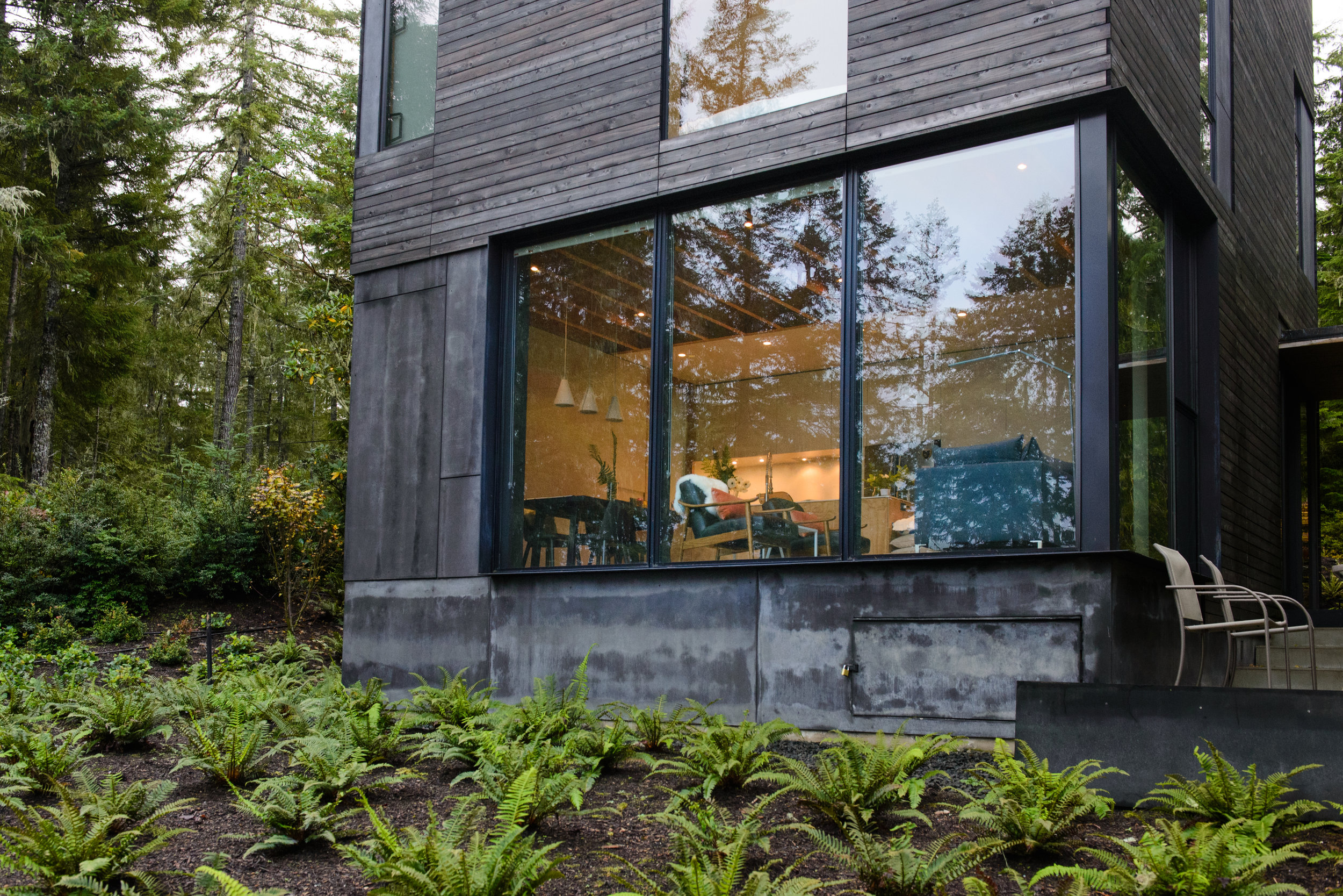Exterior view of the tiny cabin- views of the kitchen and living area are visible from the fern covered landscape.