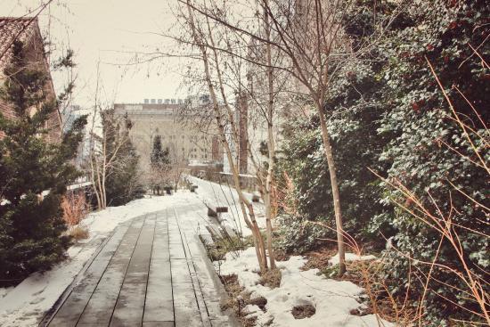 Minus the magical winter snow, of course. Thanks El Nino! Courtesy of  Trip Advisor