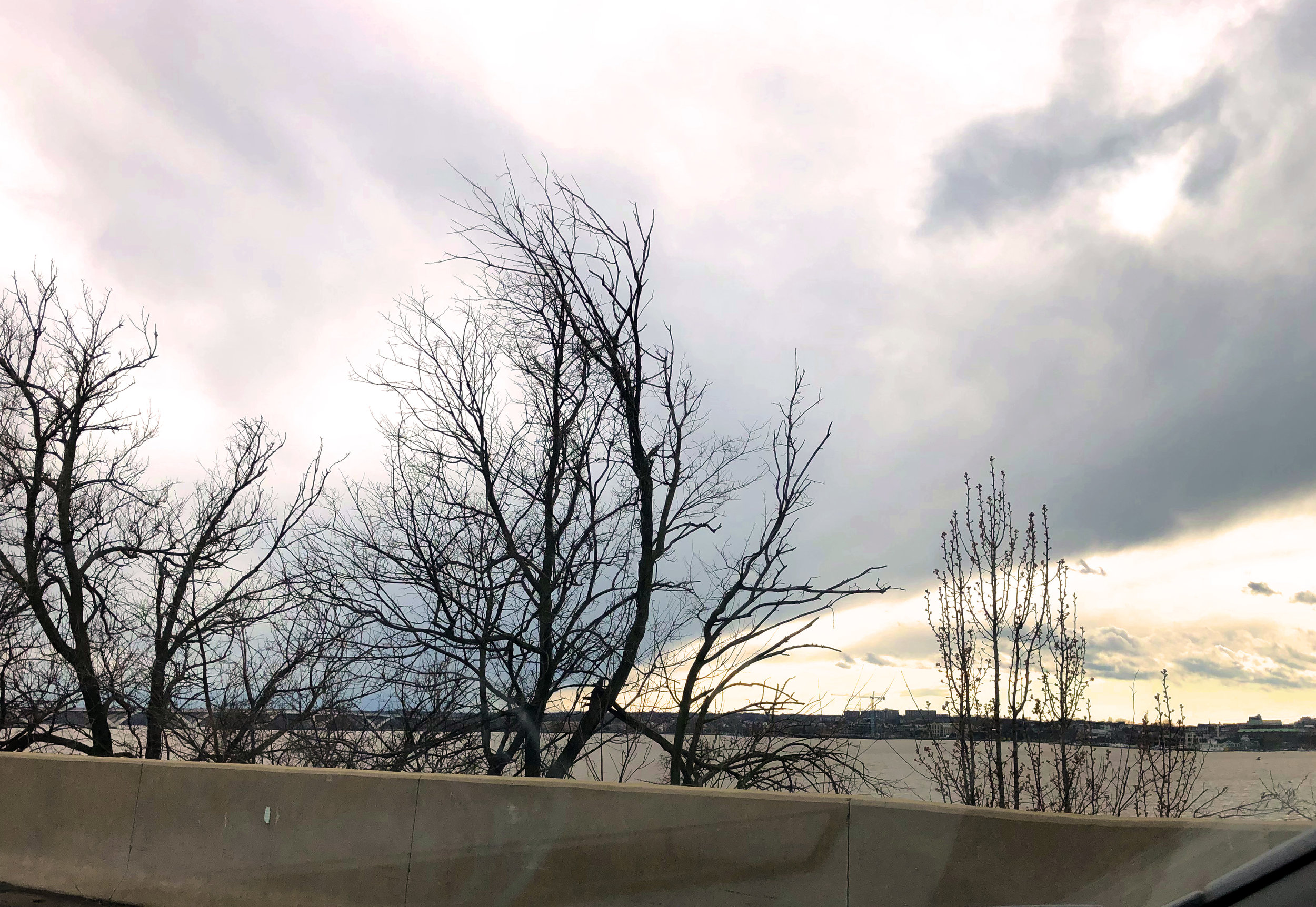 Post-storm skies during a 20 minute traffic stop in D.C. Definitely no cherry blossoms yet.