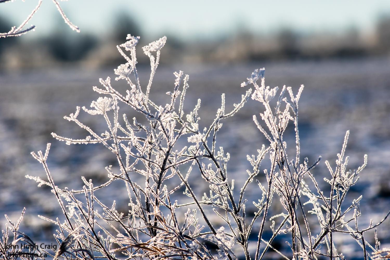 Winter Shnow & Ice