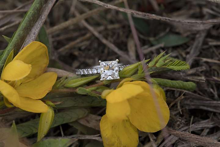 Princess cut with simple diamond band, look at how the diamond picks up the yellow of the flower petals!