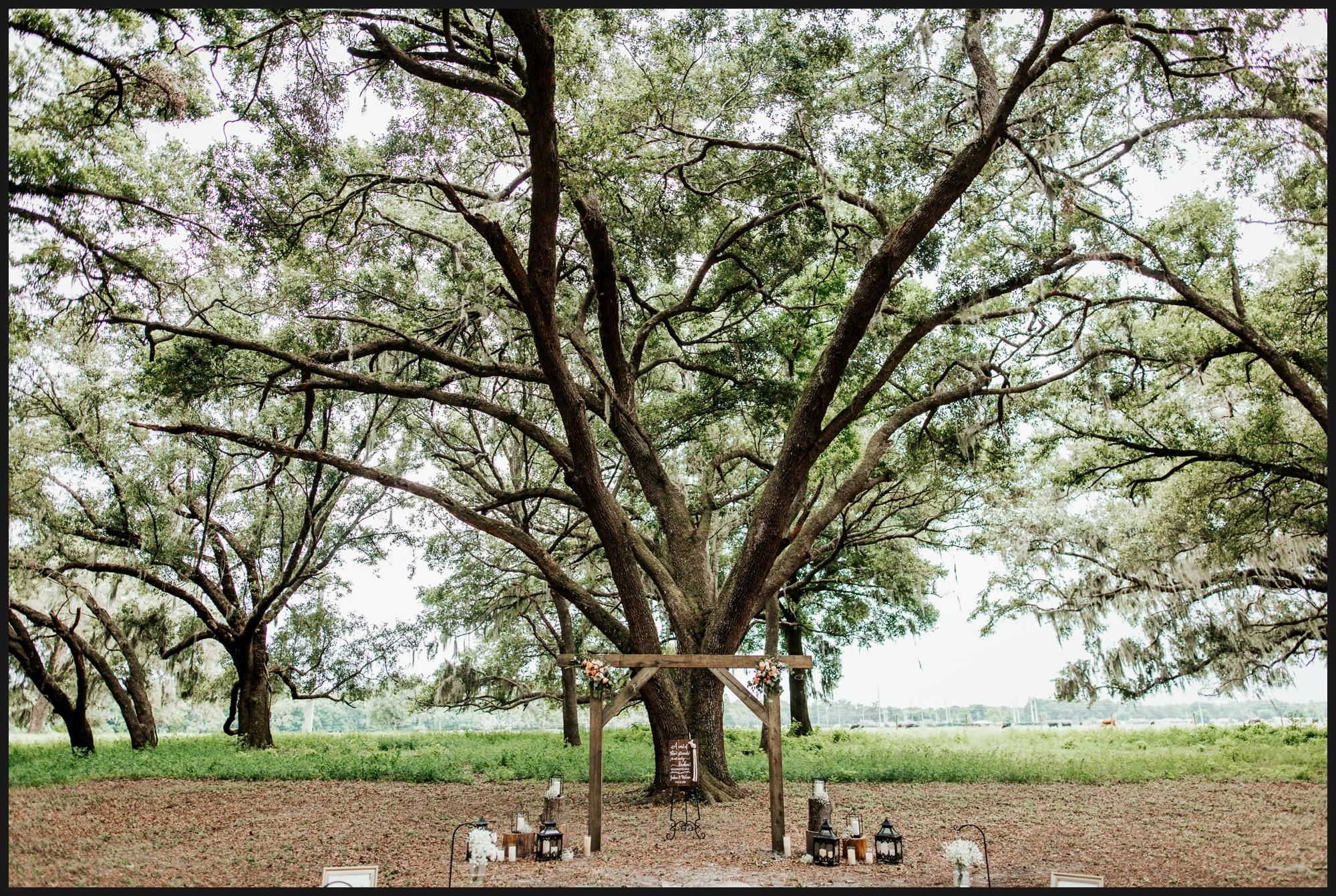 Orlando-Wedding-Photographer-destination-wedding-photographer-florida-wedding-photographer-hawaii-wedding-photographer_0303.jpg
