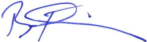 Brian Ricklin Signature_BLUE Small.jpg