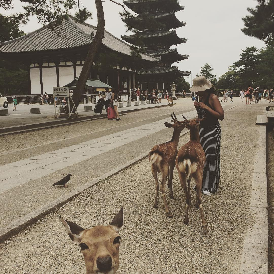 Photo-bombing is fun - My deer friends in Nara, Japan