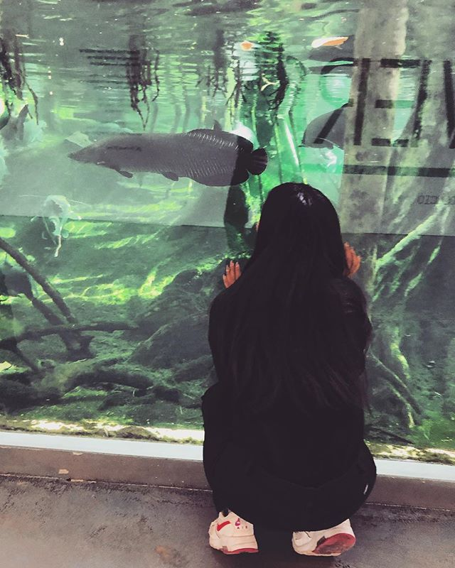 Hola da Barcelona. I've been such an explorer this week. I found a big aquarium in CosmoCaixa that, clearly, I was fascinated by. I've never been so close to big fishes before. 😄 Have a great weekend, everyone! Love and kisses