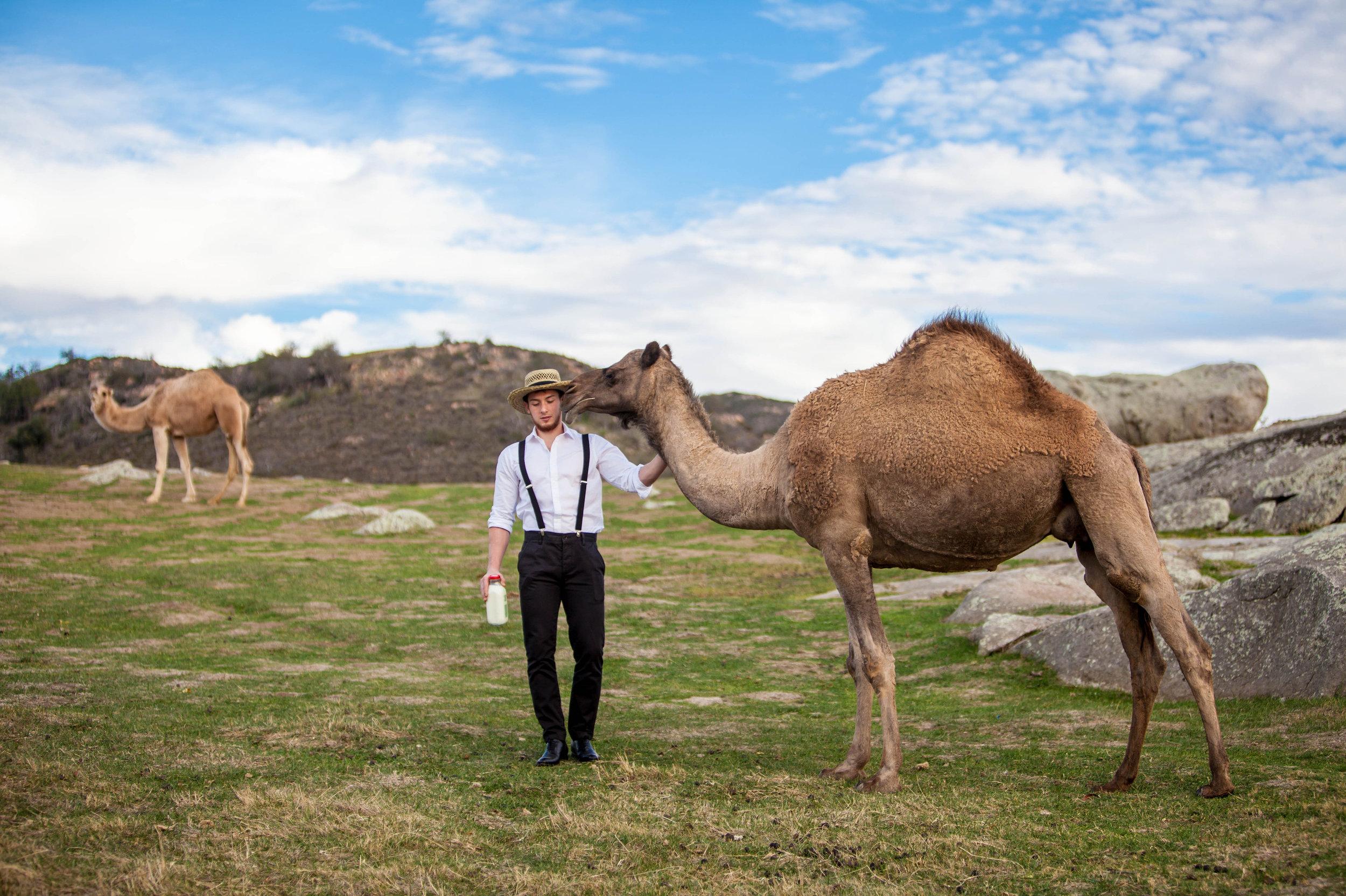 Photo courtesy of Desert Farms