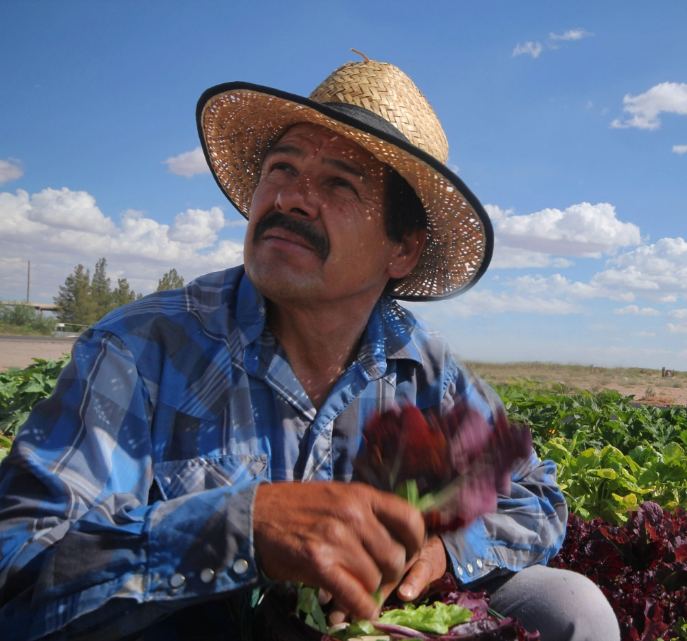 Luis Castañada of SOLAR Farm in Chaparral, New Mexico.