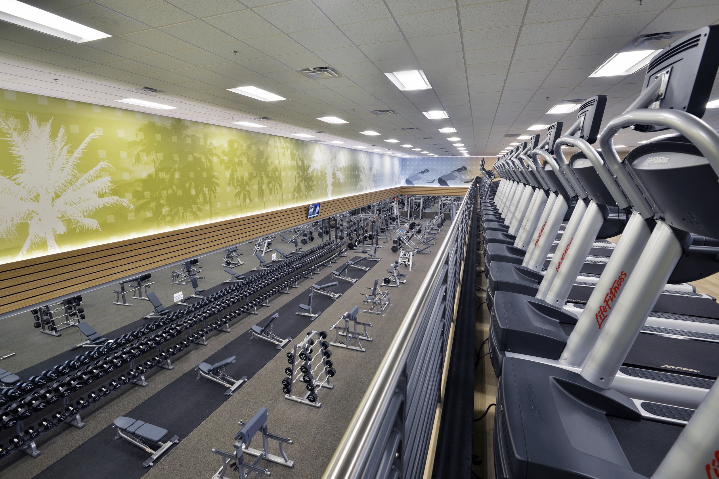 LA Fitness, Frisco, TX