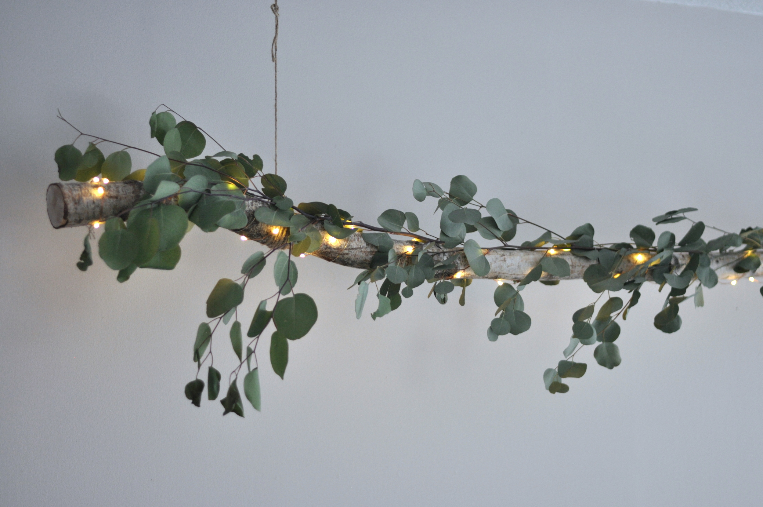 Birch Log With Fresh Eucalyptus and Twinkling Lights