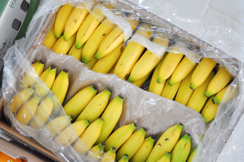 105 Organic Bananas!