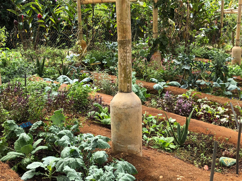 Farm of Life-27.jpg