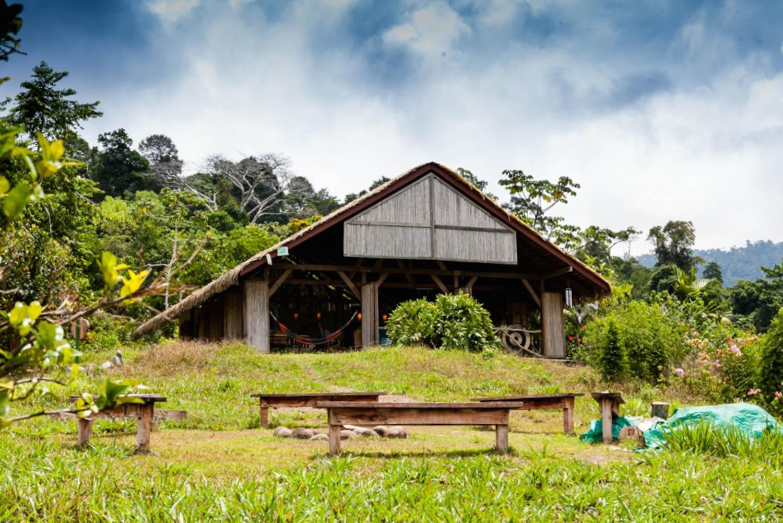 Farm of Life-9.jpg