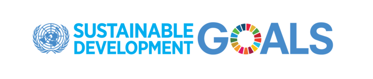 SDG_long+rectangular+logo.png