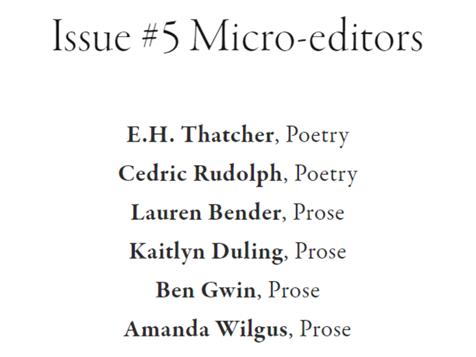 Micro-Editors-Issue5.png