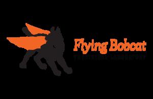 http://flyingbobcat.org