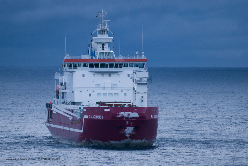 The SA Agulhas II at Marion Island. © Ryan Reisinger.
