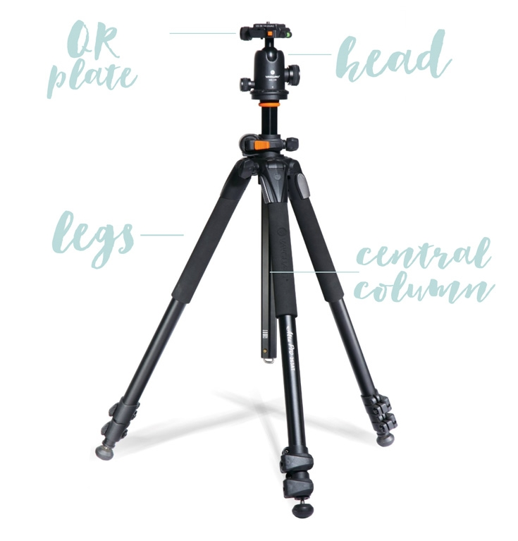 How-to-Choose-your-first-tripod.jpg