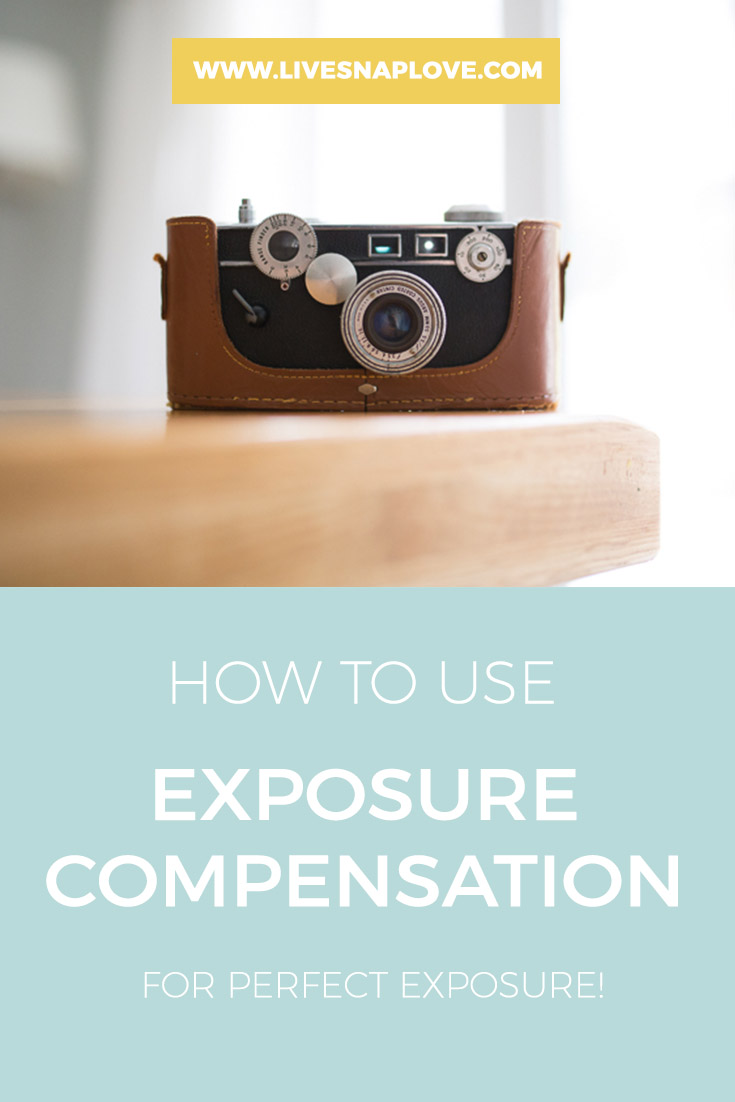 Photography Tips   Photography Tutorial   How to use exposure compensation