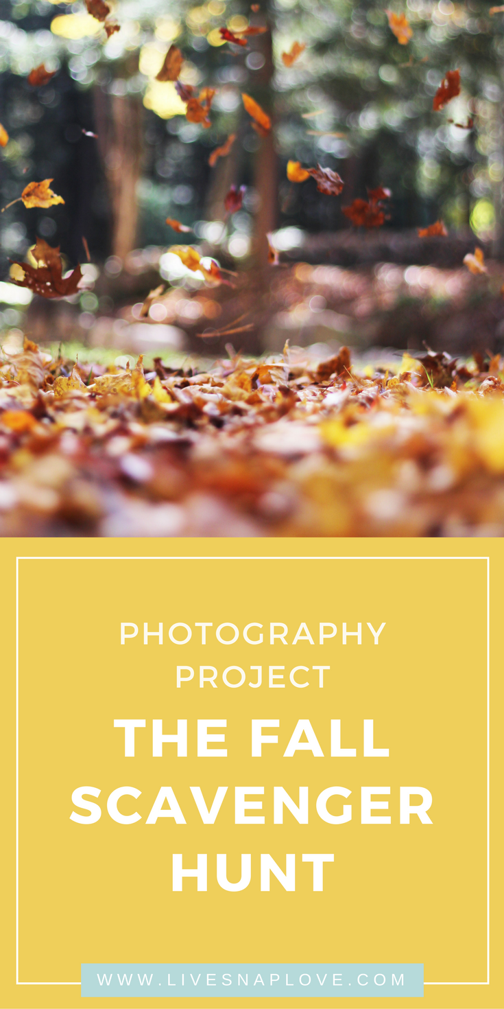 Photography Project for Fall | Creativity Challenge | Photo Scavenger Hunt | Photo Prompts for Fall