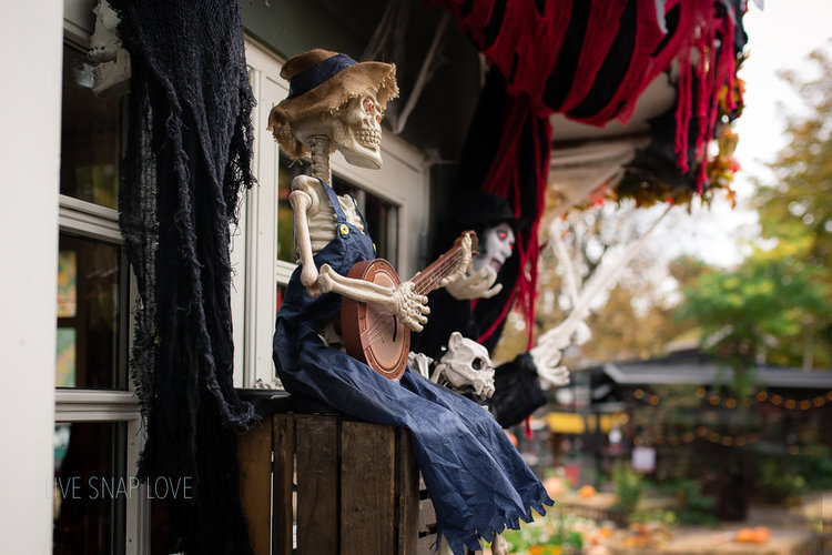 4 Tips For Photographing Halloween