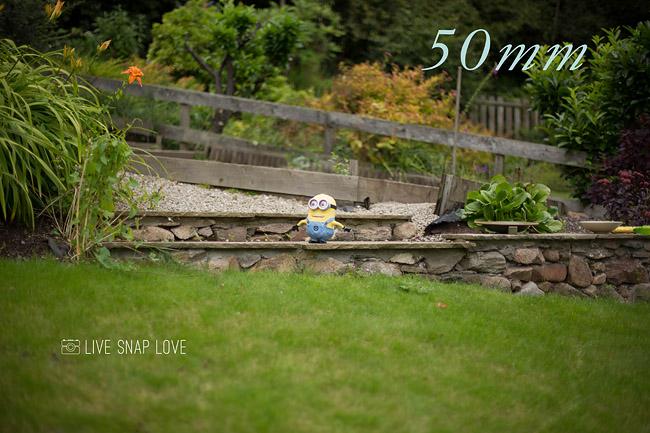 35mm vs 50mm - 50mm focal length.jpg