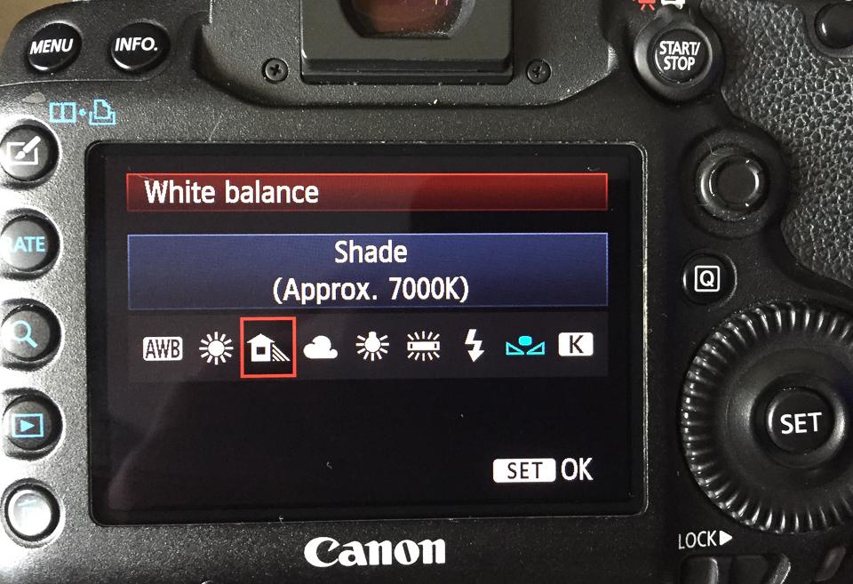 White balance settings for open shade.jpg