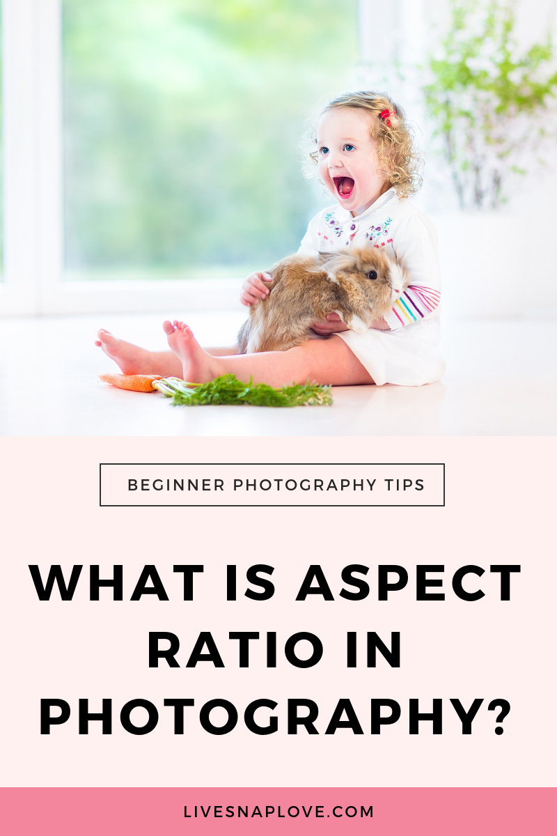 Learn about aspect ratio in photography, and how that can affect your photos! Photography Tips | Aspect Ratio | Printing Photos