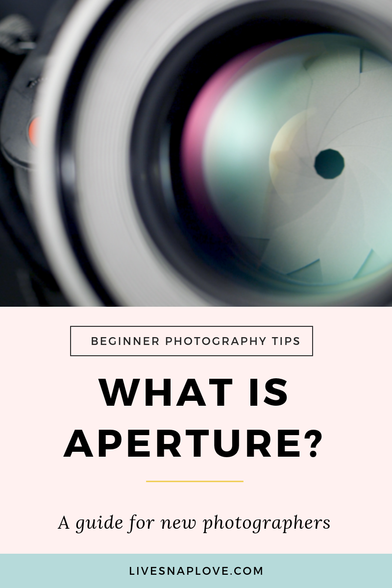 Learn how to shoot in aperture priority mode in this step by step photography tutorial for beginners!  You'll get some aperture photography examples, and learn how to use aperture for portraits, and how depth of field works. Plus you can grab an Aperture Priority Cheat Sheet at the same time!  Click through to read the full tutorial now! #phototips #beginnerphotographytips #manualmode