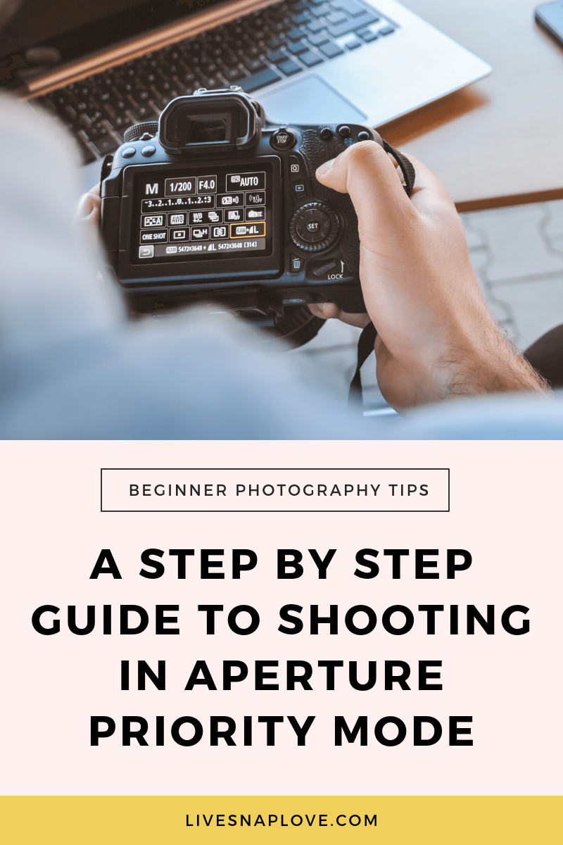 Learn how to shoot in aperture priority mode in this step by step photography tutorial for beginners - and grab an Aperture Cheat Sheet at the same time! | Photography tips for beginners | Beginner Photography Tips | Aperture Cheat Sheet