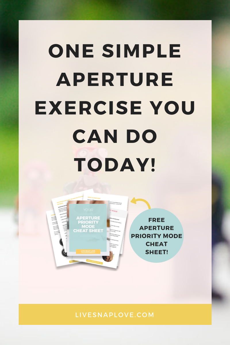Learn all about aperture with this easy to follow aperture and depth of field exercise! | Beginner Photography Tips | Aperture Exercise | Aperture Cheat Sheet | Aperture Priority Mode