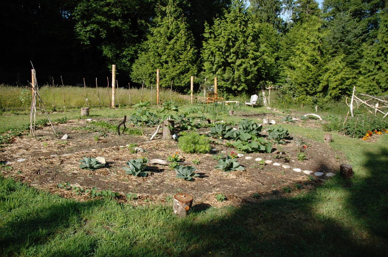 Organic Garden, Cortes Island, B.C.