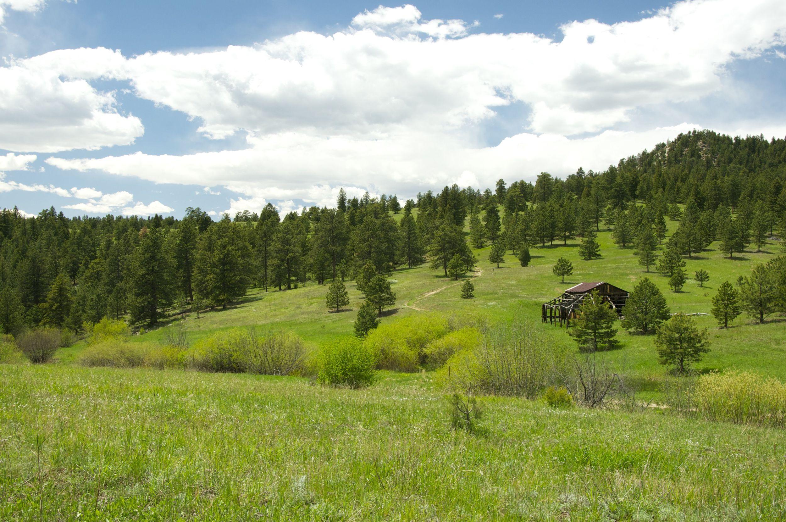 Meyer's Homestead Trail