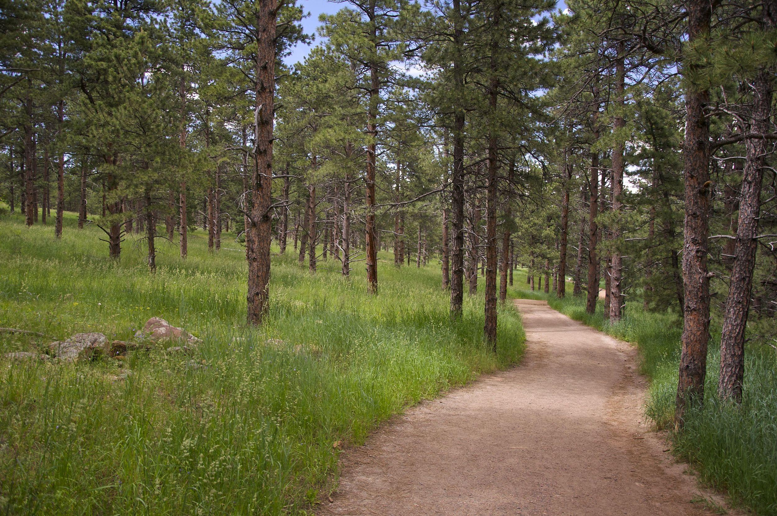 Enchanted Mesa Trail