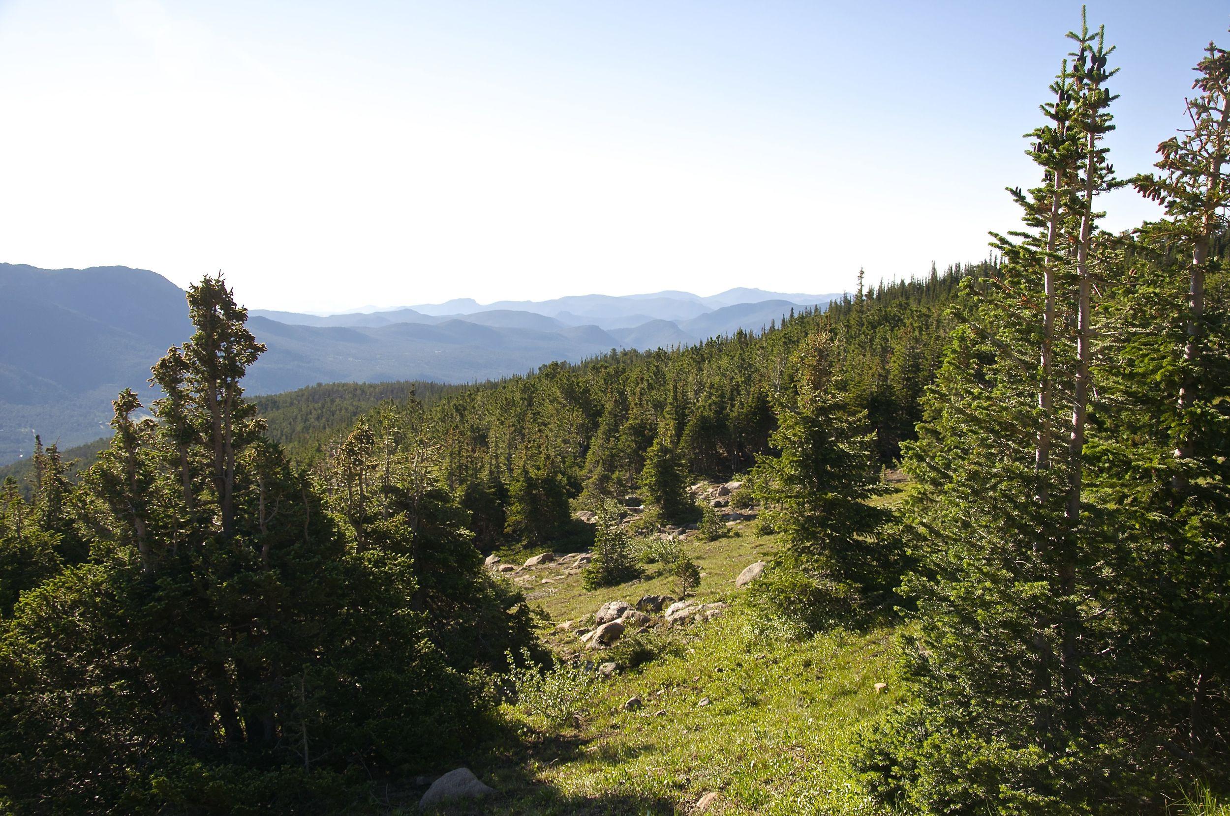 Chasm Lake via Long's Peak Trail