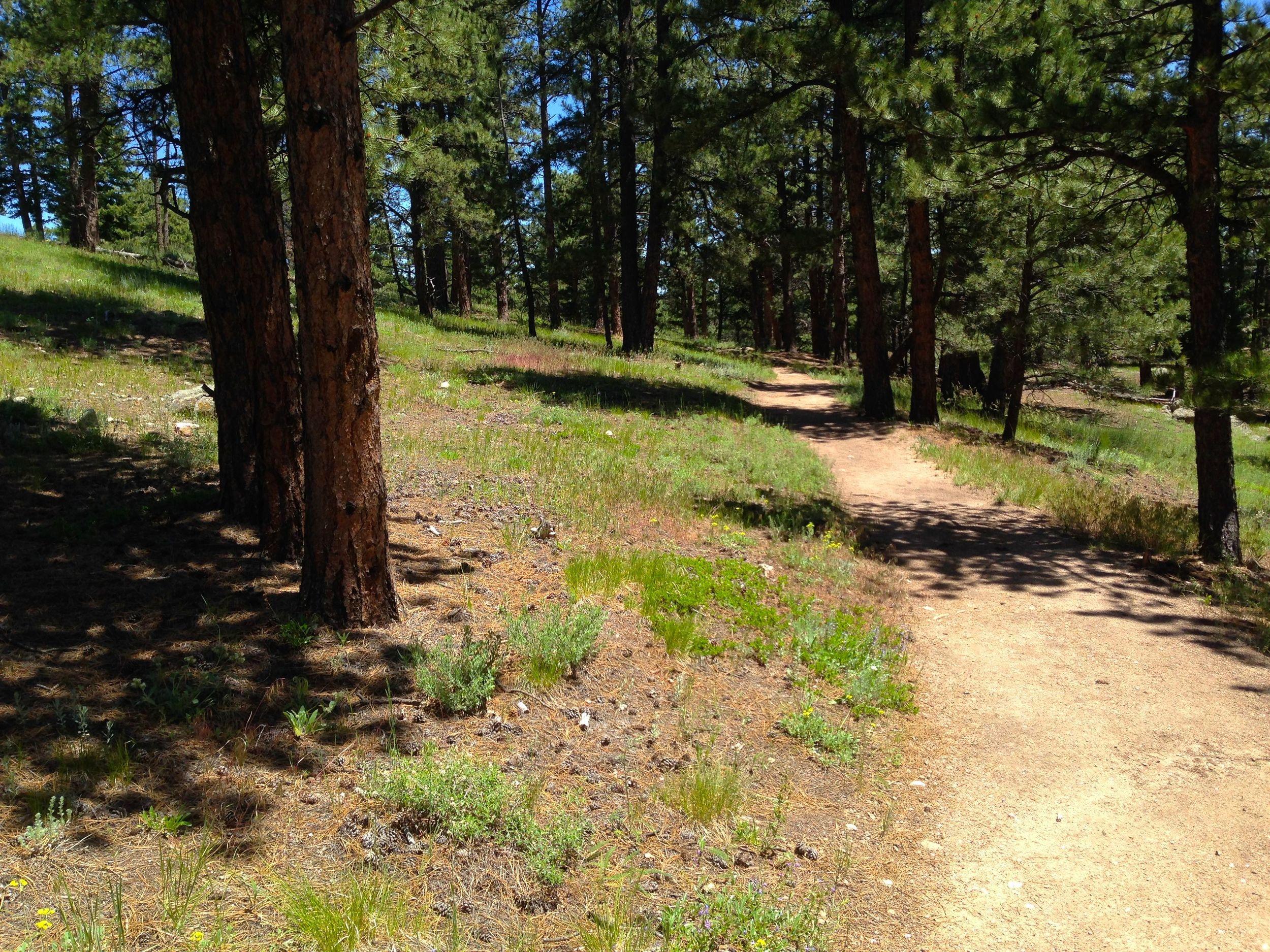 Ute Trail Boulder