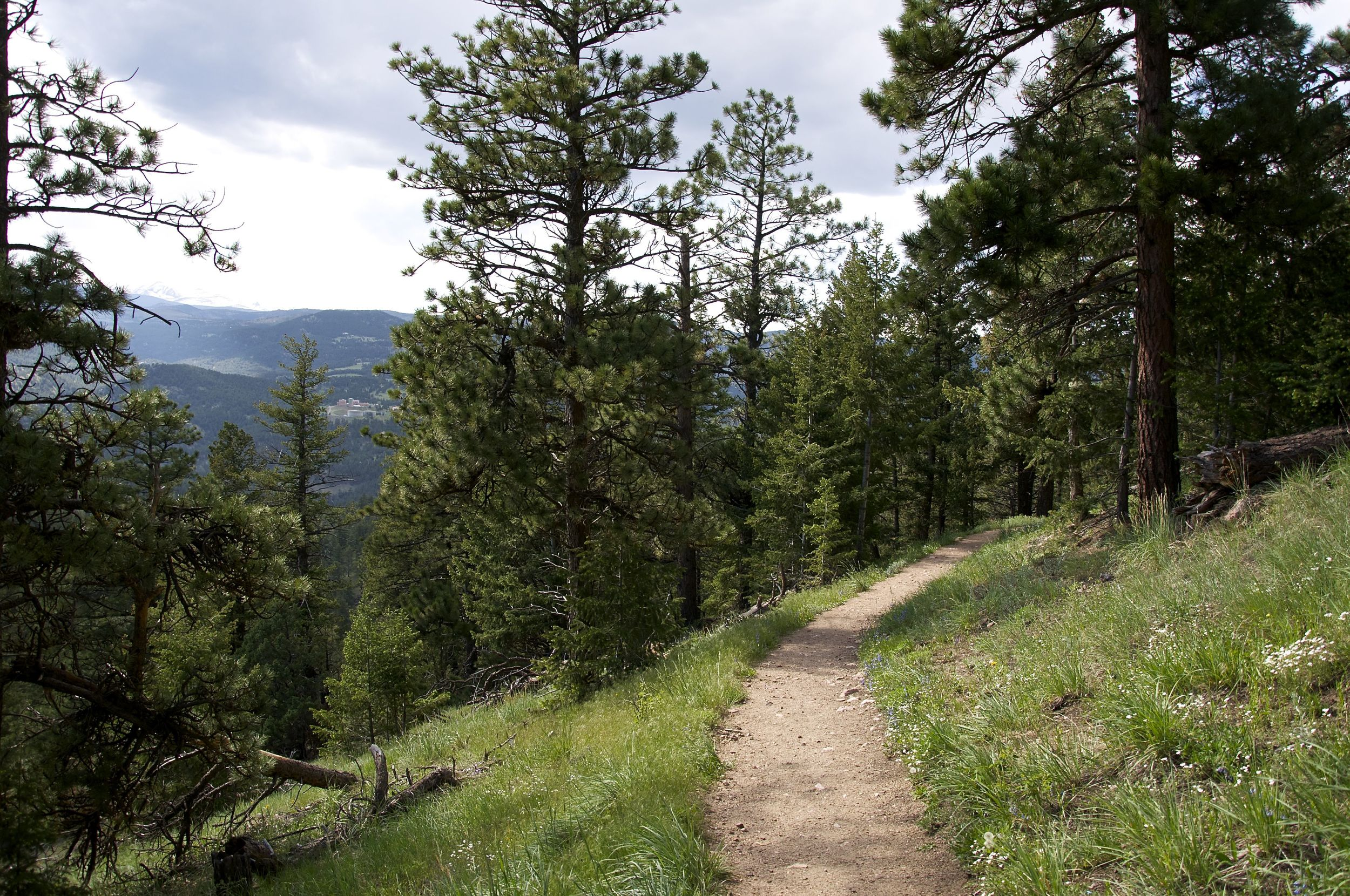Tenderfoot's views of the divide are some of the best!