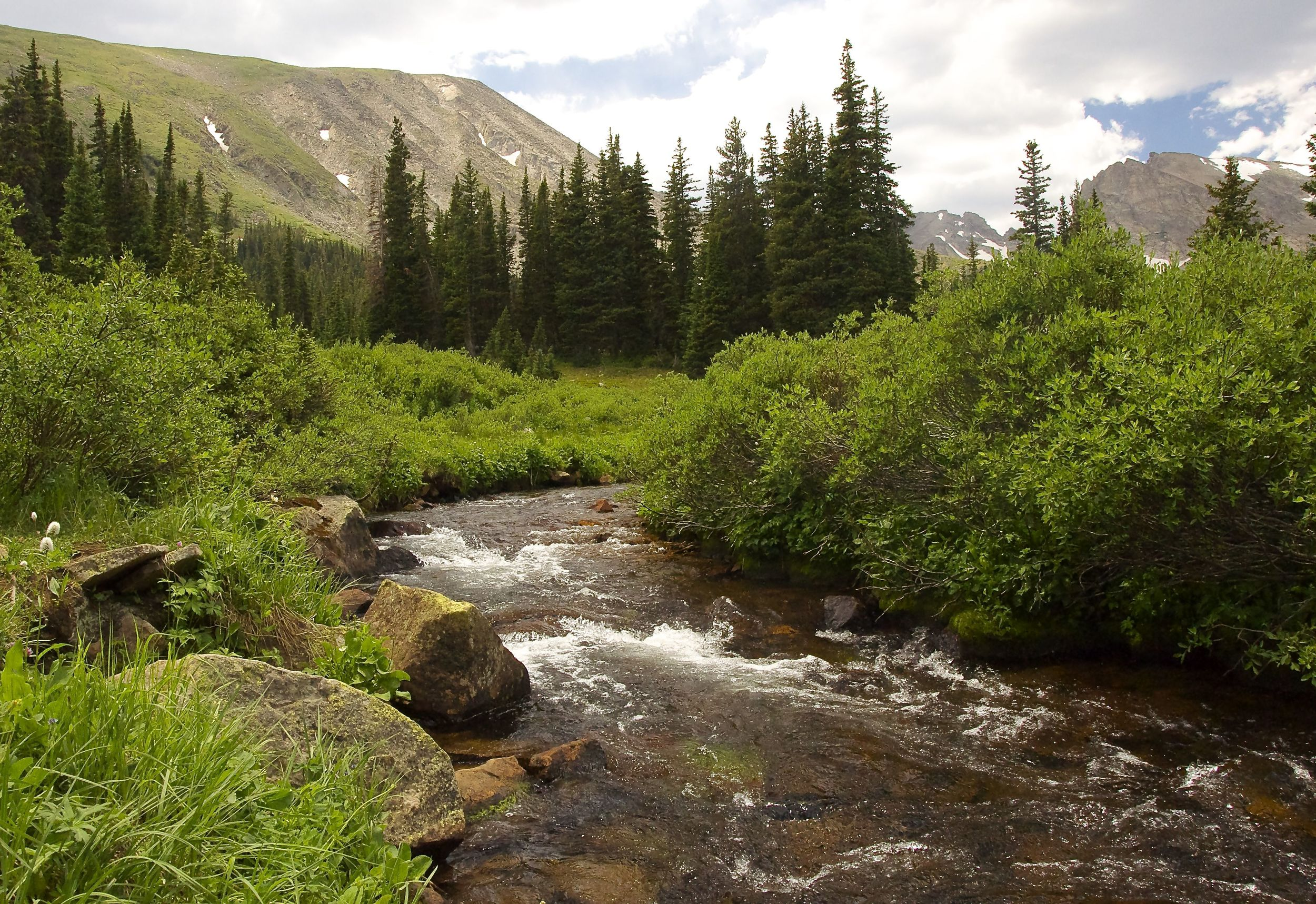 Long Lake's streams and wildflowers are perfect for lovers!