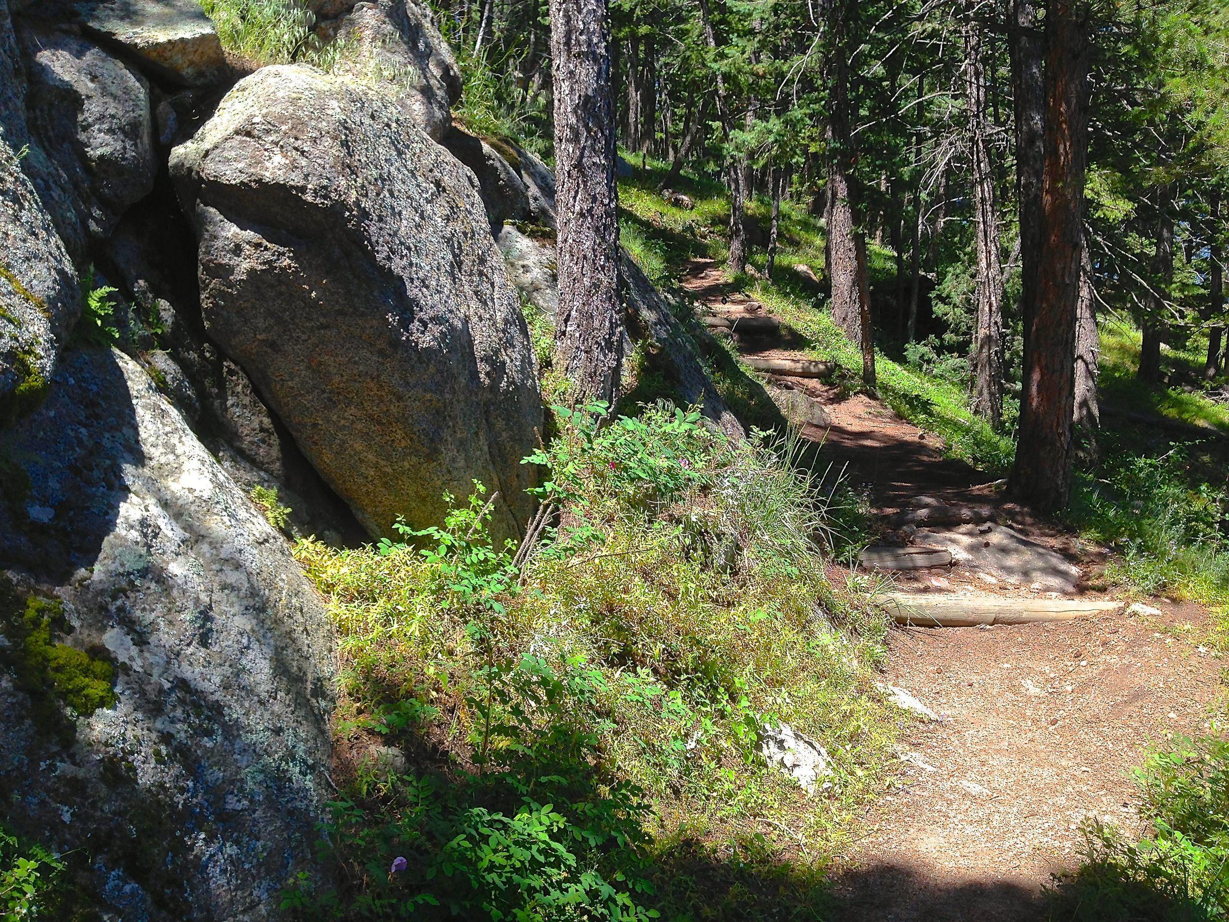 Boy Scout circles Flagstaff Summit's beautiful picnic spots