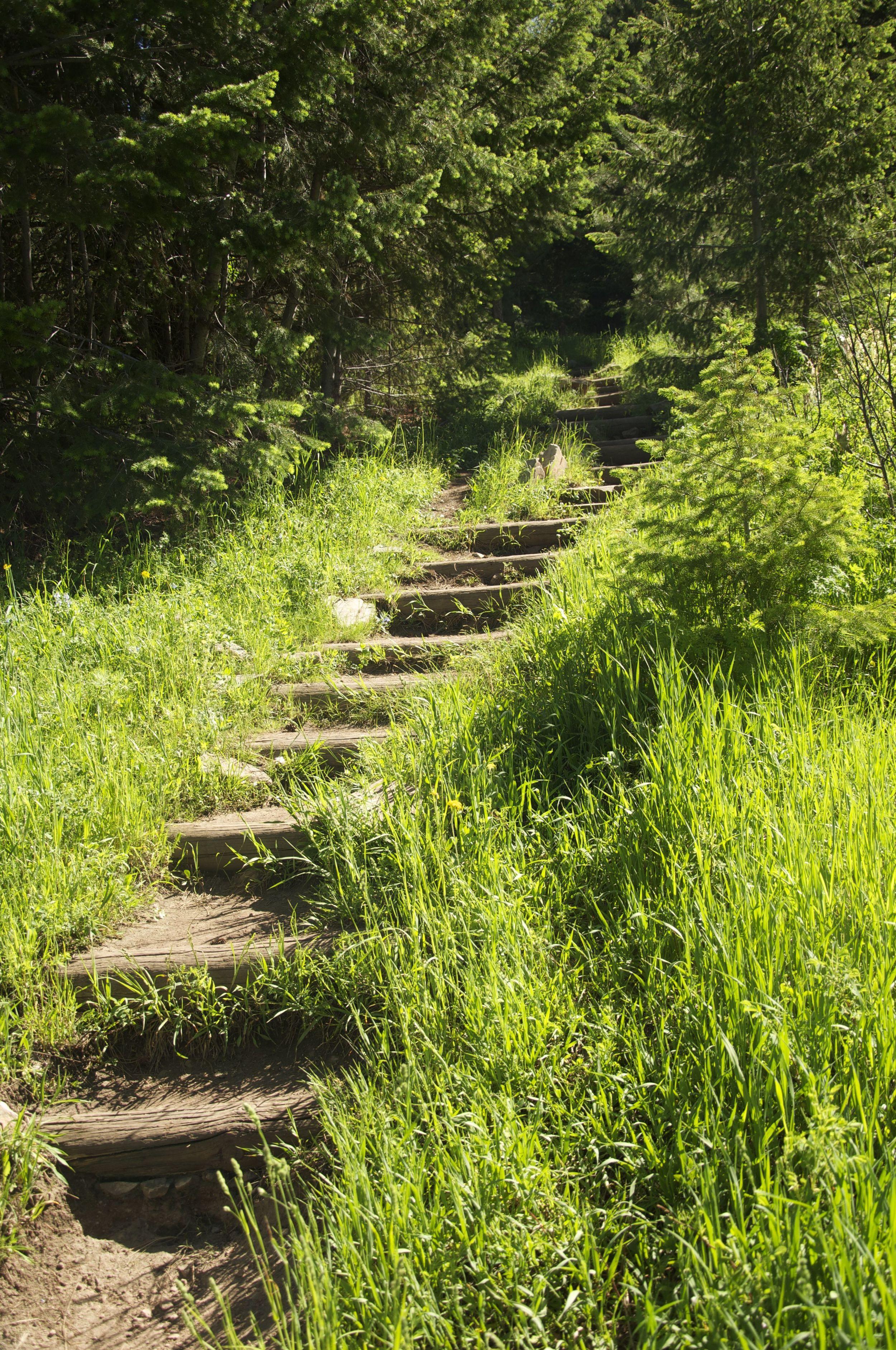 Mesa Trail Boulder