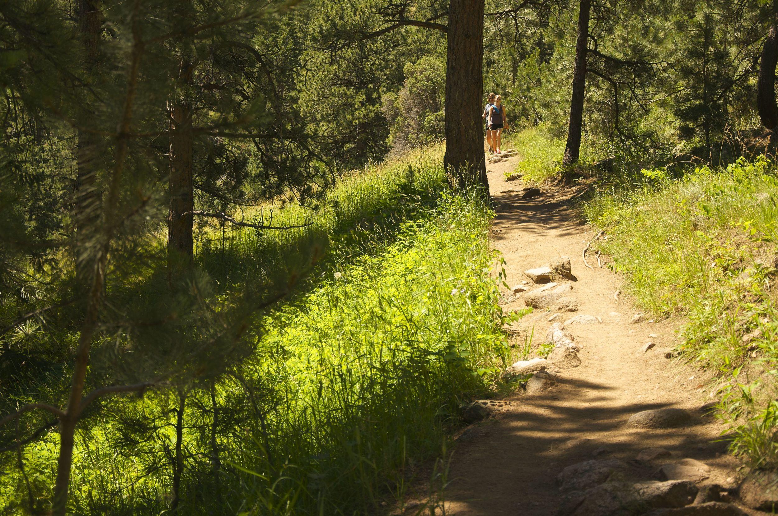 Green Mountain Hike via Gregory Canyon Trail
