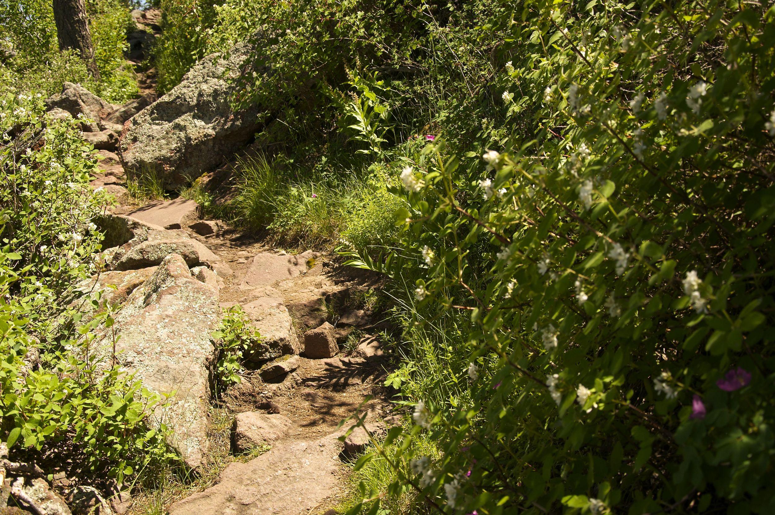 Green Mountain Hike Boulder via Greenman Trail