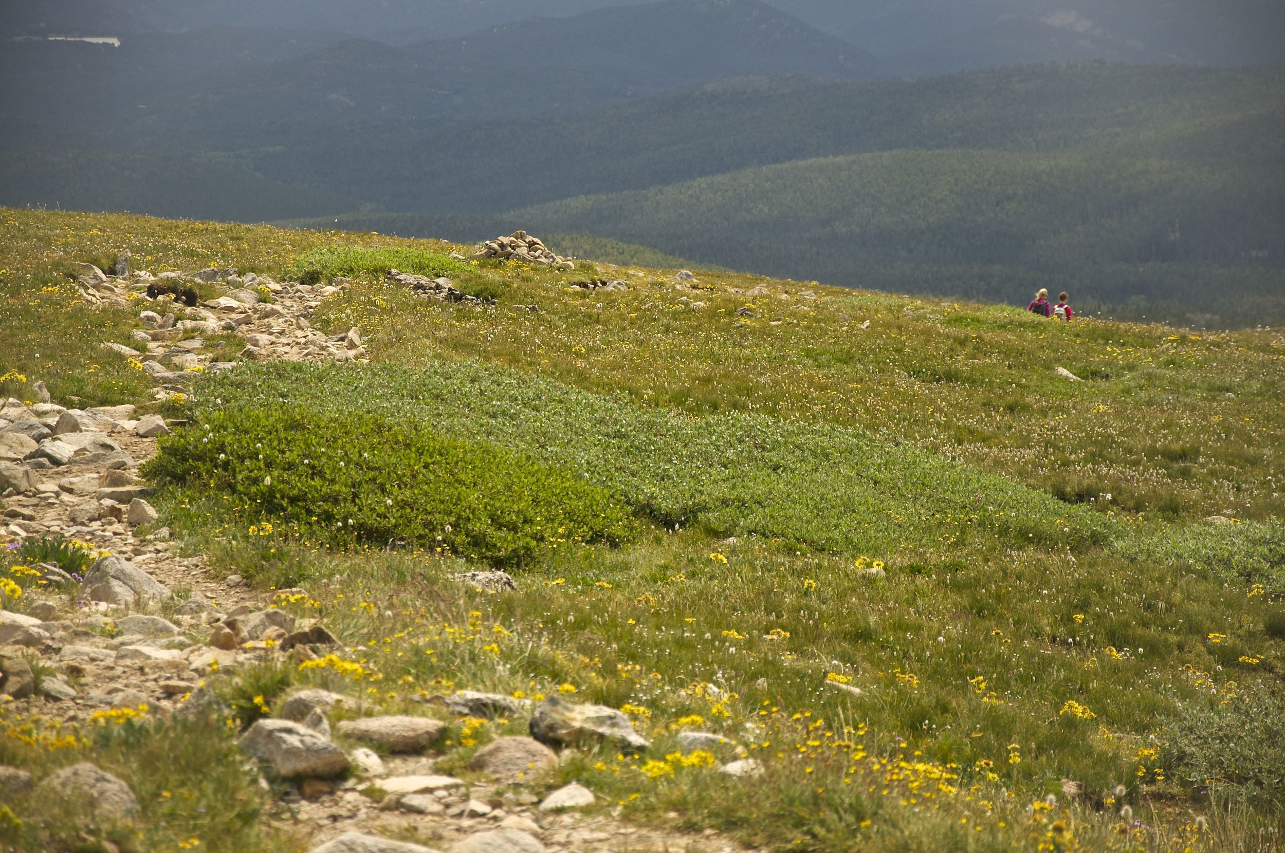 Mt. Audubon Trail