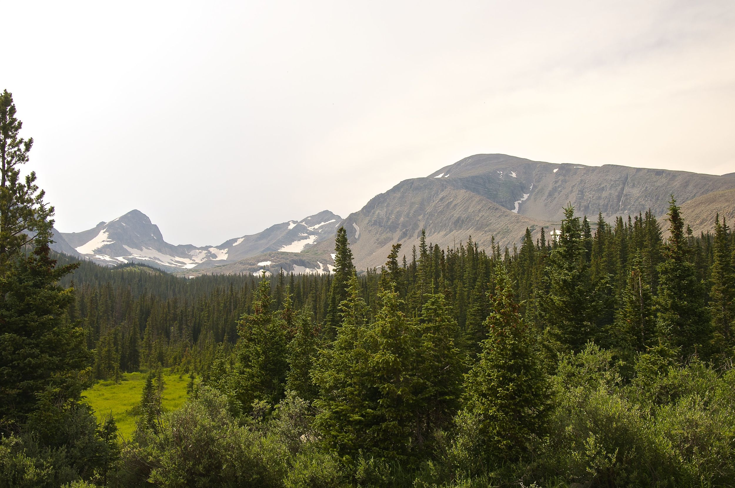 Mt Audubon dwarfing the Indian Peaks from the trailhead.