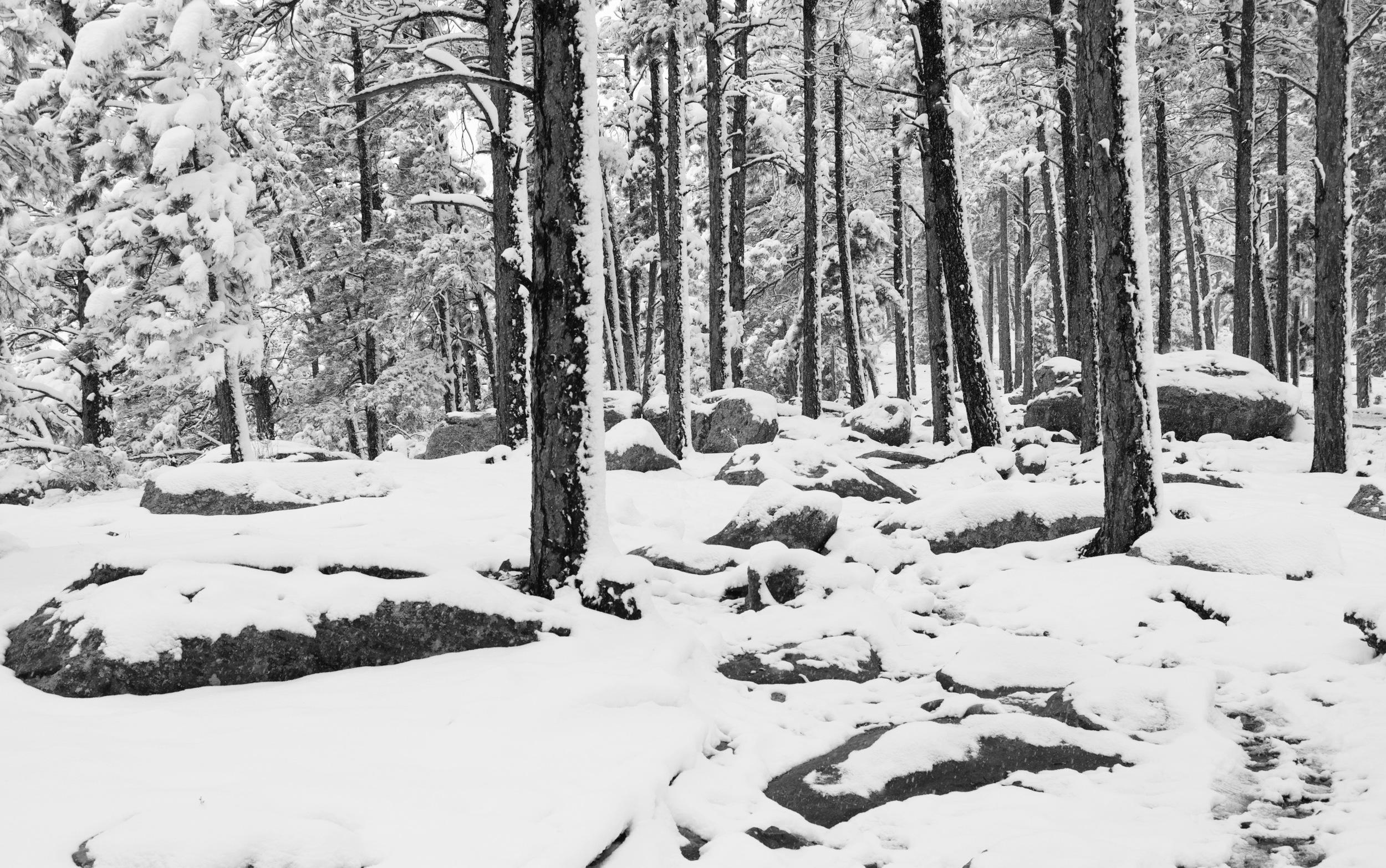 Kohler Mesa Trail to Woods Quarry
