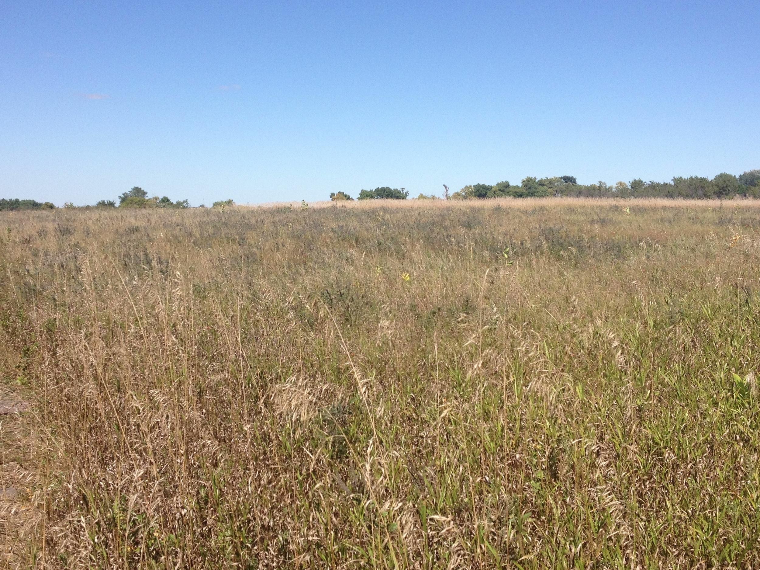 Prairie at Pipestone National Monument